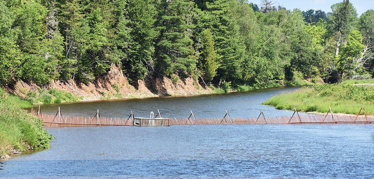 Jacquet River Salmon Barrier